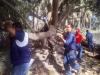 Venezolana de Cementos sigue activa en las jornadas de trabajo voluntario