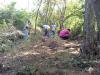 Venezolana de Cementos realiza Programa de Reforestación en Canteras Pertigalete