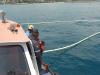 Realizado simulacro de derrame de hidrocarburo en el Terminal Marítimo Catia La Mar de Venezolana de Cementos