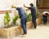 Venezolana de Cementos realiza jornada de trabajo voluntario en Planta Valencia
